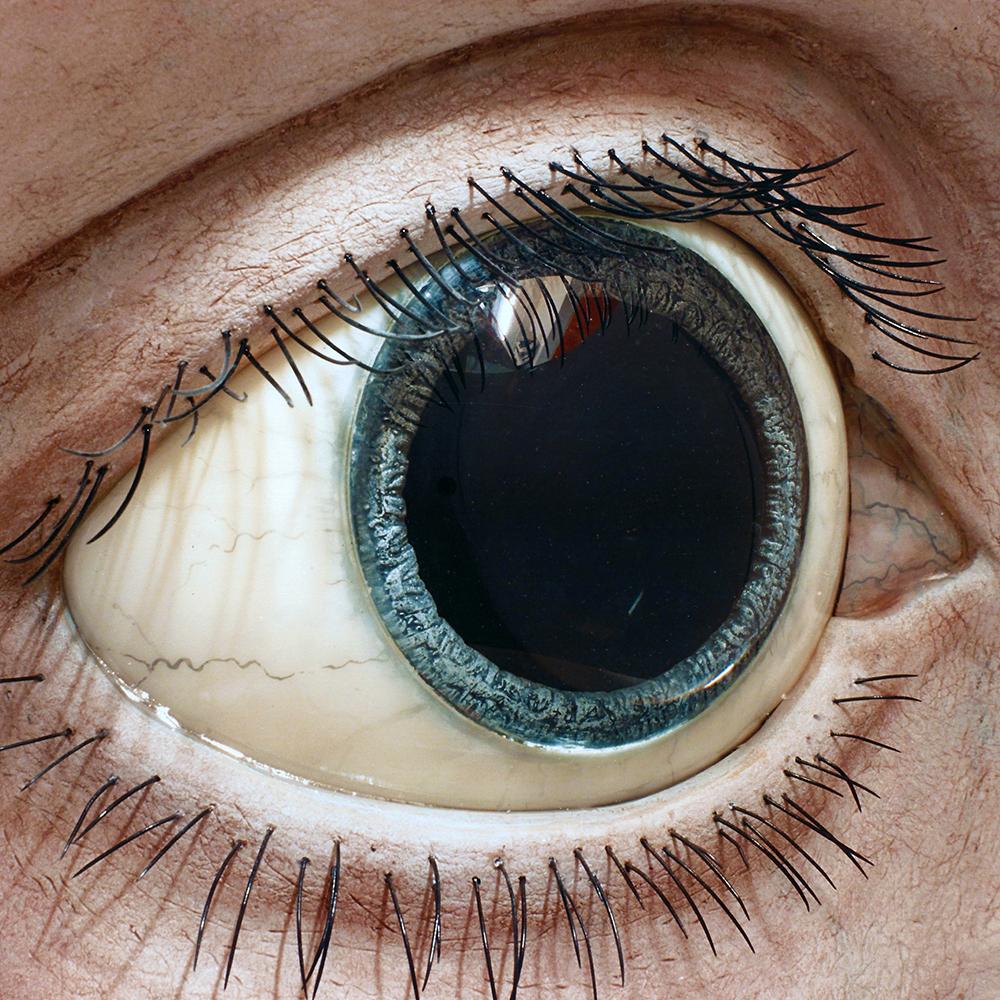 Auge 10:1 Detail